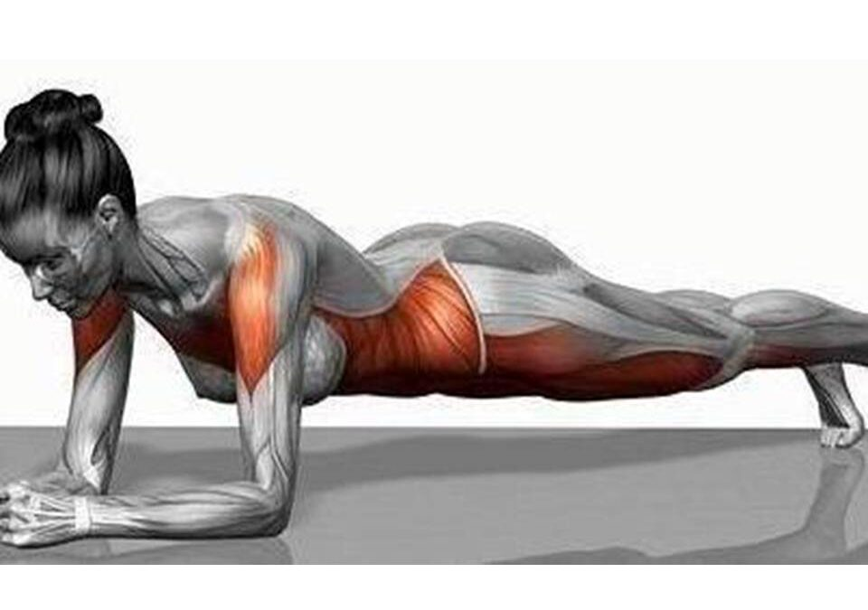 The Importance of the Plank and Core Strength…..